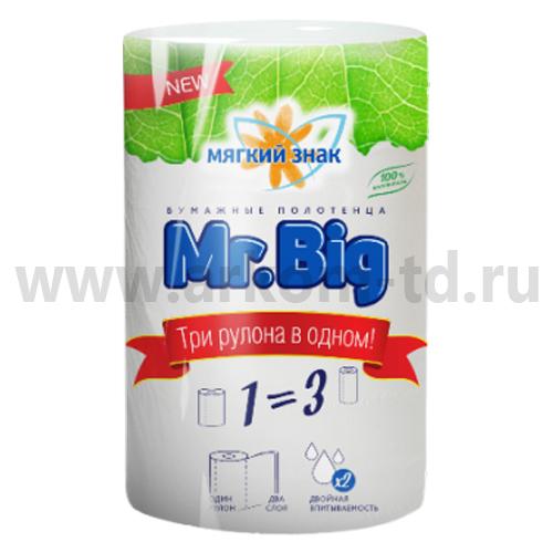 Бумажные полотенца Мягкий знак Mr.Big 2сл белые